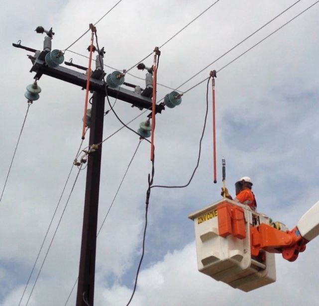 Electrician attaching PEDs on overhead line